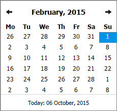 Setting a Custom Date Range